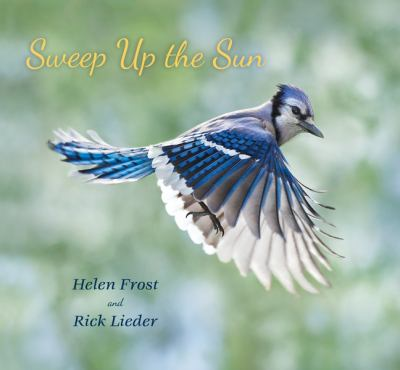 Cover image for Sweep up the Sun