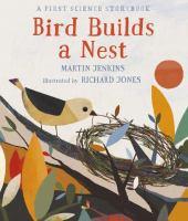 Bird Builds A Nest