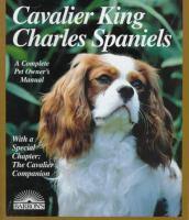 Cavalier King Charles Spaniels