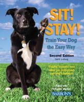 Sit! Stay!
