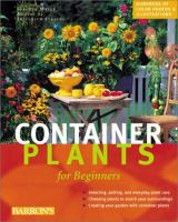 Container Plants for Beginners