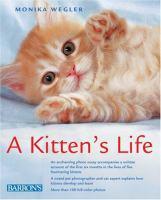 A Kitten's Life