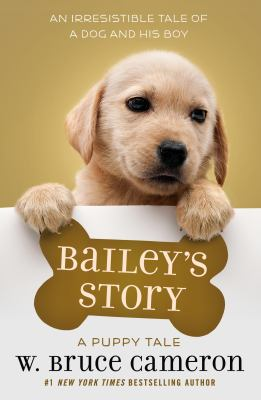 Cover image for Bailey's Story