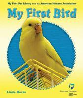 My First Bird