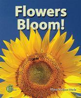 Flowers Bloom!