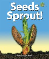 Seeds Sprout!