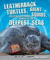 Leatherback Turtles, Giant Squids, and Other Mysterious Animals of the Deepest Seas