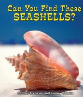 Can You Find These Seashells?