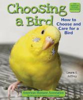 Choosing A Bird