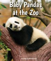 Baby Pandas at the Zoo