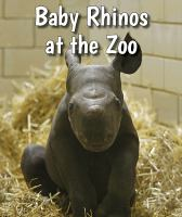 Baby Rhinos at the Zoo