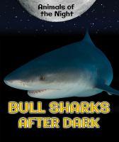 Bull Sharks After Dark