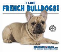 I Like French Bulldogs!