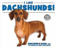 I Like Dachshunds!
