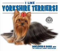 I Like Yorkshire Terriers!