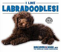 I Like Labradoodles!