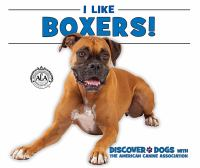 I Like Boxers!
