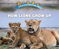 How Lions Grow up