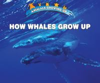How Whales Grow up