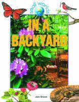 In A Backyard