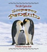 Life Cycle of An Emperor Penguin