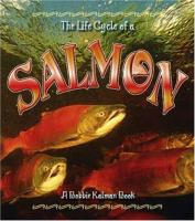 The Life Cycle of A Salmon