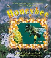 The Life Cycle of A Honeybee