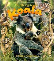 The Life Cycle of A Koala