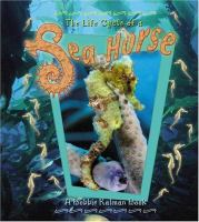 The Life Cycle of A Sea Horse