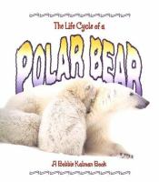 The Life Cycle of A Polar Bear
