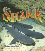 The Life Cycle of A Shark