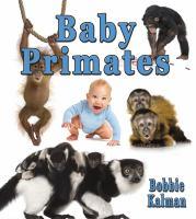 Baby Primates