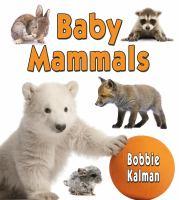 Baby Mammals