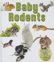 Baby Rodents