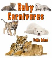 Baby Carnivores
