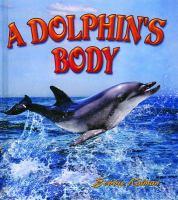 A Dolphin's Body