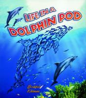 Life in A Dolphin Pod