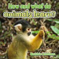 How and What Do Animals Learn