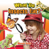 What Do Insects Eat