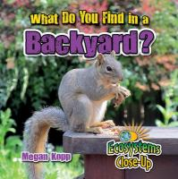 What Do You Find in A Backyard