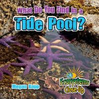 What Do You Find in A Tide Pool?