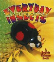 Everyday Insects