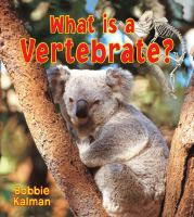 What Is A Vertebrate