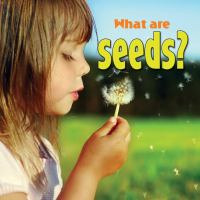 Image: What Are Seeds?
