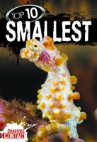 Top 10 Smallest