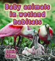 Baby Animals in Wetland Habitats