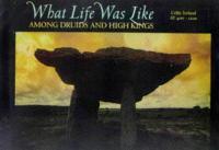 What Life Was Like Among Druids and High Kings