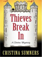 Thieves Break In