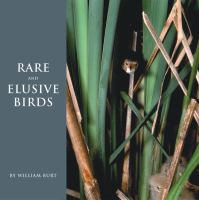 Rare And Elusive Birds Of North America