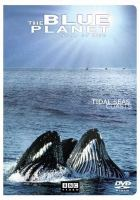 Tidal Seas